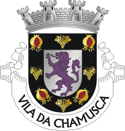 METEO CHAMUSCA