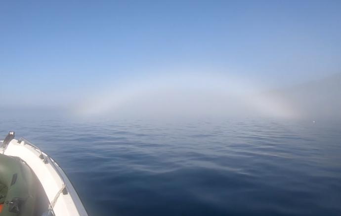 Arco de névoa